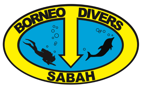 Borneo Divers – Diving in Borneo, Mabul and Mamutik Island